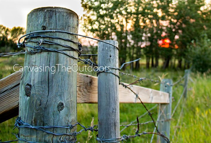 Country Fence Canvas Wall Art