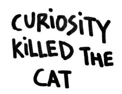Southernism  - curiosity killed the cat.