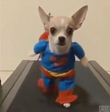 7-Their costumes are cuter.  Superman