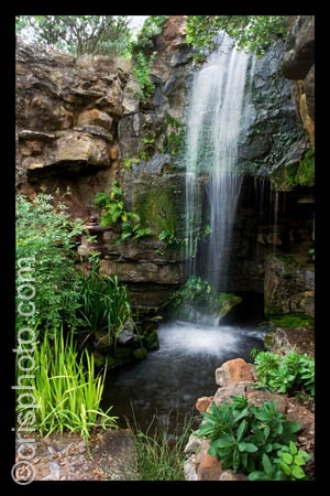 14 best images about weatherford tx on pinterest gardens cherries and parks for Chandor gardens weatherford tx