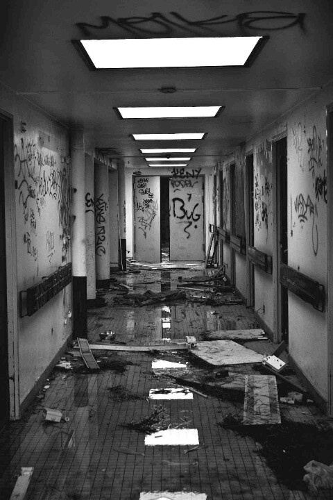 I explore the old school with the others, looking for a safe place to hide. You couldn't stay in one place for more than a day during the apocalypse. Either the zombies would find you or some lunatic who's willing to do anything to survive would. (Open rp)