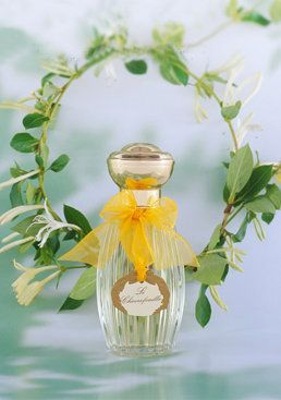 Annick Goutal Le Chevrefeuille. This fragrance was created by Annick Goutal's daughter Camille, together with the master perfumer of the house, Isabelle Doyen. The flower of honeysuckle has a suave and honey scent. It is subtly transformed by the stem, which brings a green, fresh and herbaceous note. Other secrets : a hint of wild narcissus, a suggestion of jasmine and a dash of lemon tree seeds. Freshness and sun, flower and fruit... The contrasts create the harmony.
