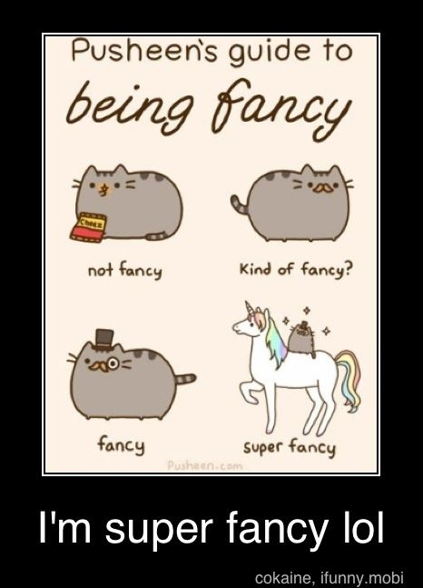 Fancy @ Corinn Mundy and Margie Mundy. lolCat Quotes, Awesome, Pusheen Cat, Funny, Fancy Cat, Pusheen Guide, Super Fancy, Fancy Kitty, Animal