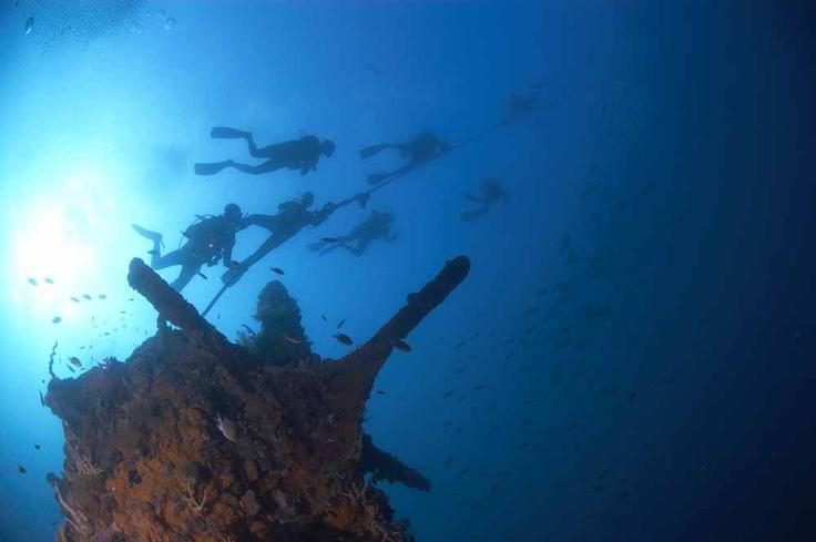 Dive safari in the Visayas Archipelago