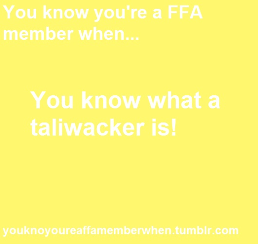 You know you're an FFA member when.. You know what a taliwacker is!....and for my non FFA members it isn't perverted!