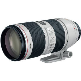 This is a pretty expensive lens but it sure is nice.  this lens lives on my camera when shooting sports and fall colorado images.  Canon EF 70-200mm f/2.8L IS II USM Telephoto Zoom Lens