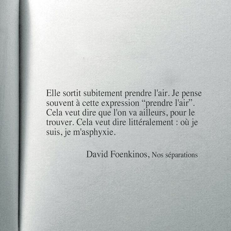 David Foenkinos citation