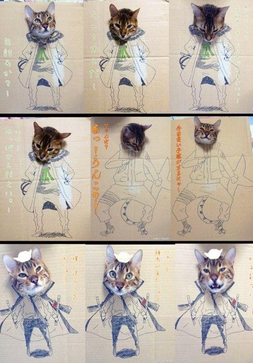 【画像】段ボールから頭を突き出している猫のイラストコスプレ(?)が妙に笑える件 - IRORIO(イロリオ)