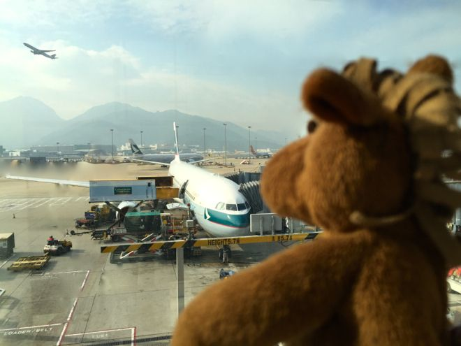 Do you have kids flying alone for the first time? Fret not. Here are all the #traveltips you need to get them (and you) air ready. http://www.suitcasesandstrollers.com/interviews/view/kids-flying-alone?l=all #travel #travelwithkids #familytravel #familyholidays #familyvacations #Donkey