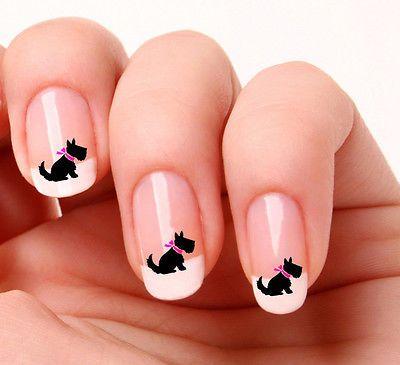 20-Nail-Art-calcomanias-transferencias-pegatinas-694-Scottish-Terrier-Terrier-Escoces-Scotty-Dog