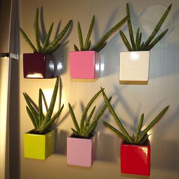 Magnetic plant pots magnet plants pinterest plant - Pot deco interieur ...