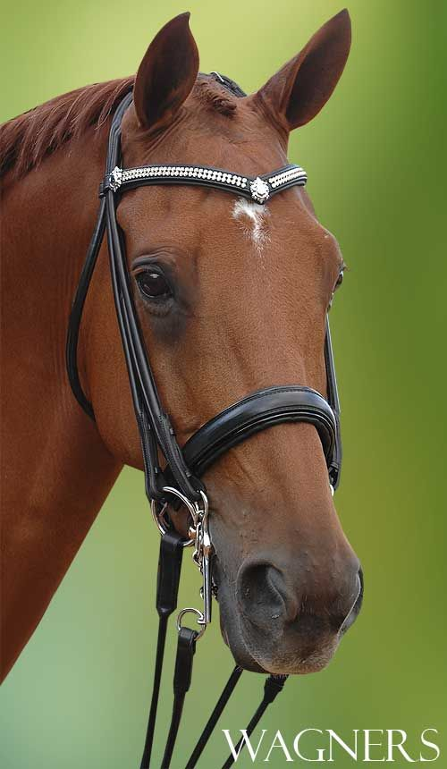 I actually have this bridle.. Love Wagners tack!