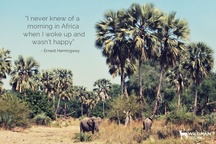 A Enrest Hemingway quote about #Africa.