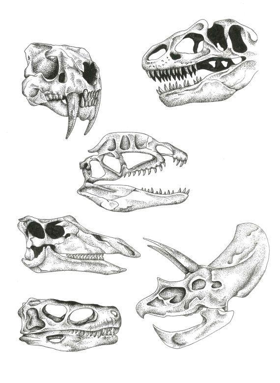 Dinosaur, skulls, dot work, Pointillism, Taxidermy