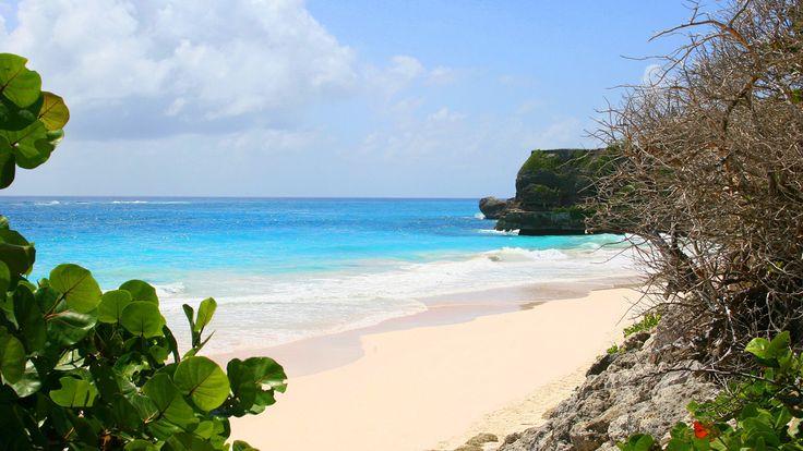 Barbados är en tropisk ö omgiven av vackra vita sandstränder och det renaste vattnet i världen! Saint Vincent och Grenadinerna  Saint Vincent och Grenadinerna är ett pärlband av öar och skär, var och en mer paradisisk än den andra. Denna önation är mycket populär bland seglare och besökare intresserade av dykning i världsklass.