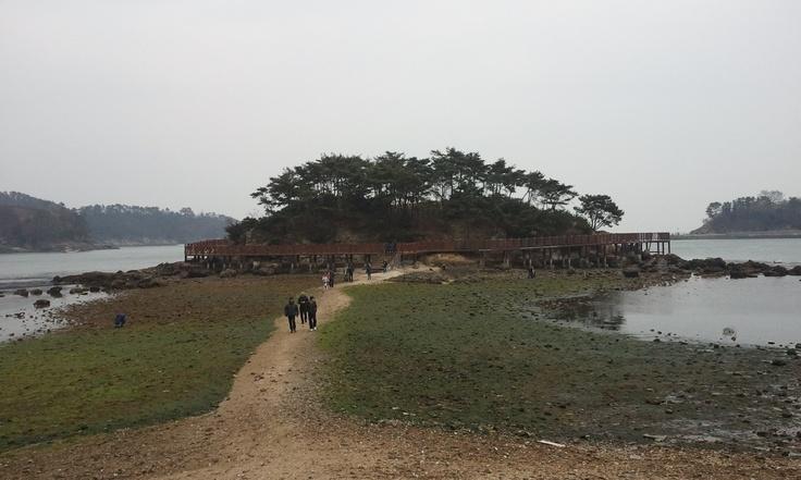 신비의 섬...진해 해양공원 가는길의 동섬