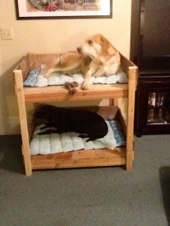Hey, I found this really awesome Etsy listing at http://www.etsy.com/listing/163201903/rustic-pet-bunk-beds-small
