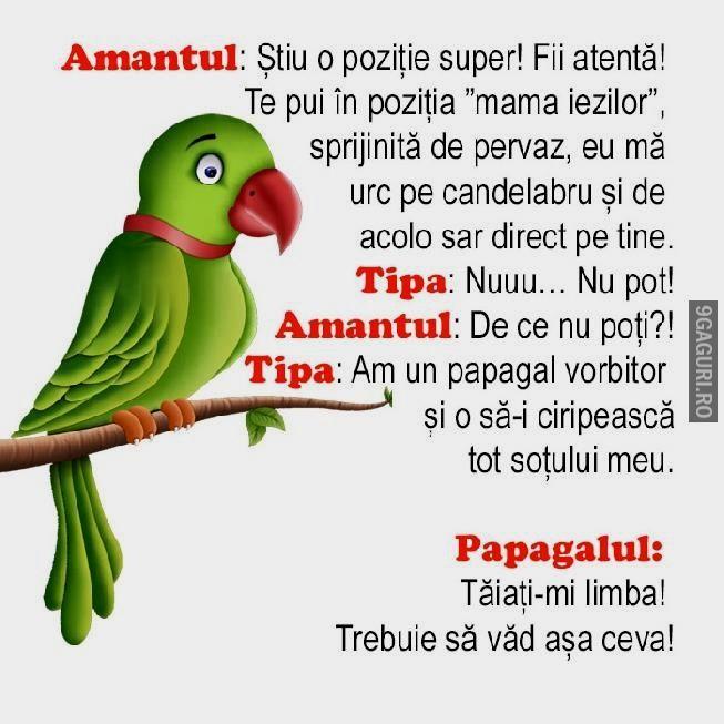 Amantul si amanta se află în dilemă   Vezi Postarea ➡ http://9gaguri.ro/media/amantul-si-amanta-se-afla-in-dilema