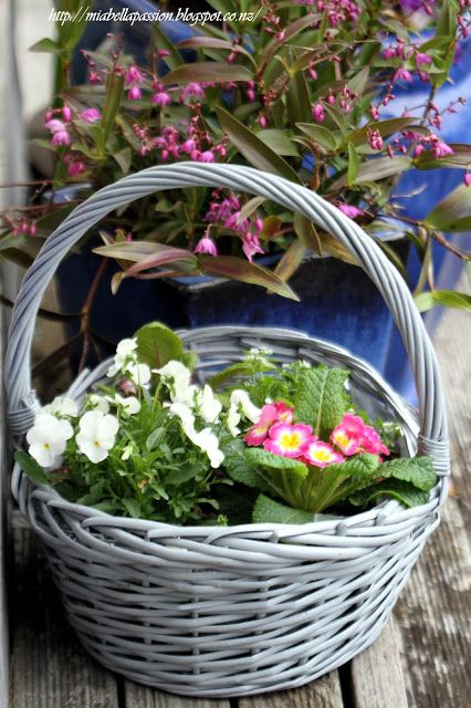 Mia Bella Passions: Spring Flower Basket...