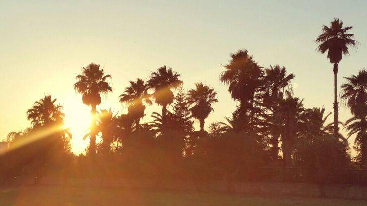 Sunshine salento