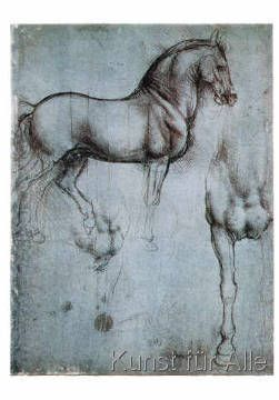 Leonardo da Vinci - Studio di cavalli