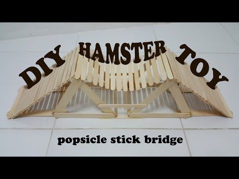 how to make hamster toy : popsicle stick bridge - YouTube