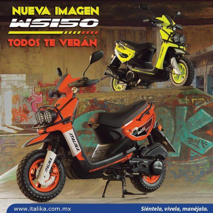 Ws150, Motos Italika, motoclycle, Motos, buxok photo