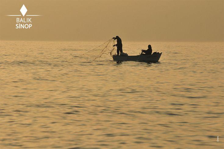 Balıkçı tekneleri ve büyük gemiler Sinop'umuza dönüşte halka müjde verir adeta. Türkiye'nin birçok şehrine lezzetli ve şifalı balık sunan balıkçılar, Sinop Limanı'na da eşsiz bir atmosfer katmaktadır.