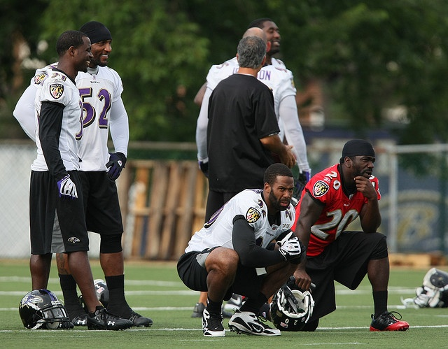 Baltimore Ravens Training Camp August 22, 2009