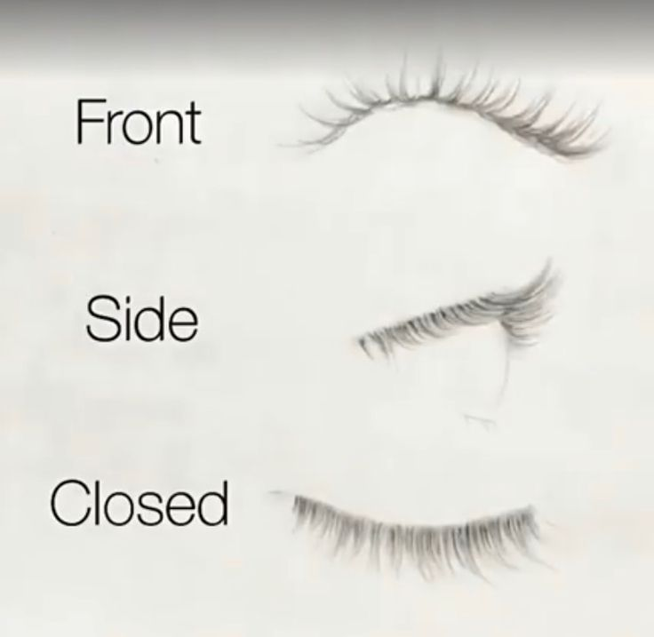 Eyelash guide from different angles realistic style