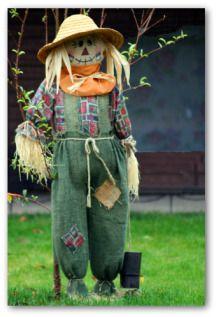 Homemade Scarecrow for Garden | homemade scarecrow near the garden