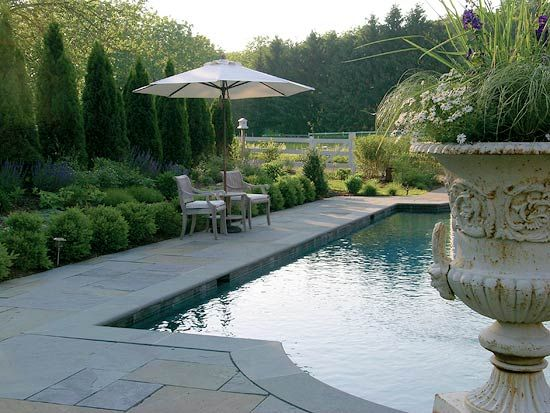 English inspired connecticut garden traditional home for English garden pool