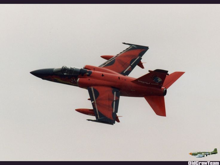 AMX Special Color 51° Stormo 132° Gruppo