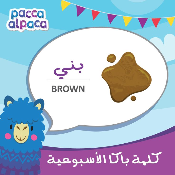 This week Pacca learns how to say brown in Arabic!