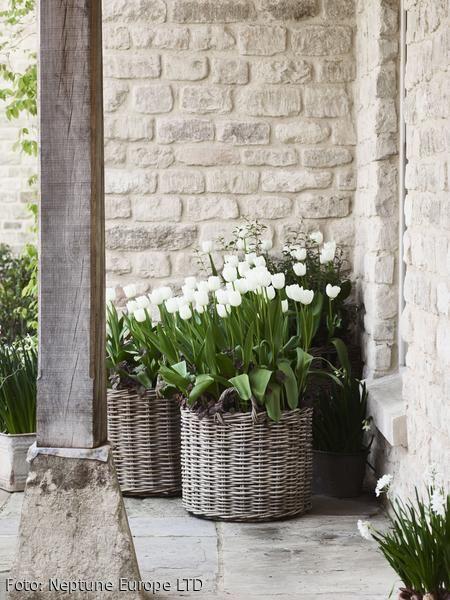 Dekorieren mit Körben – weiße Blüten machen sich im Garten besonders natürlich schön! #dekoration #skandinavisch Mehr Ideen auf roomido.com #roomido #neptune