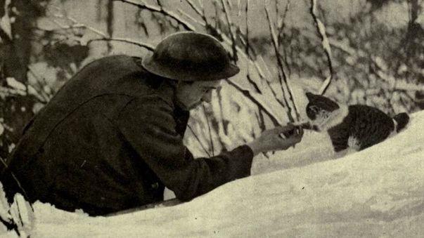 Los héroes olvidados de la Primera Guerra Mundial (1914-1918)