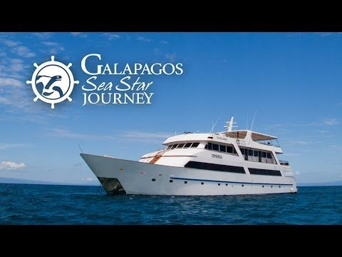 Galapagos Sea Star Journey Cruise - Boutique South America