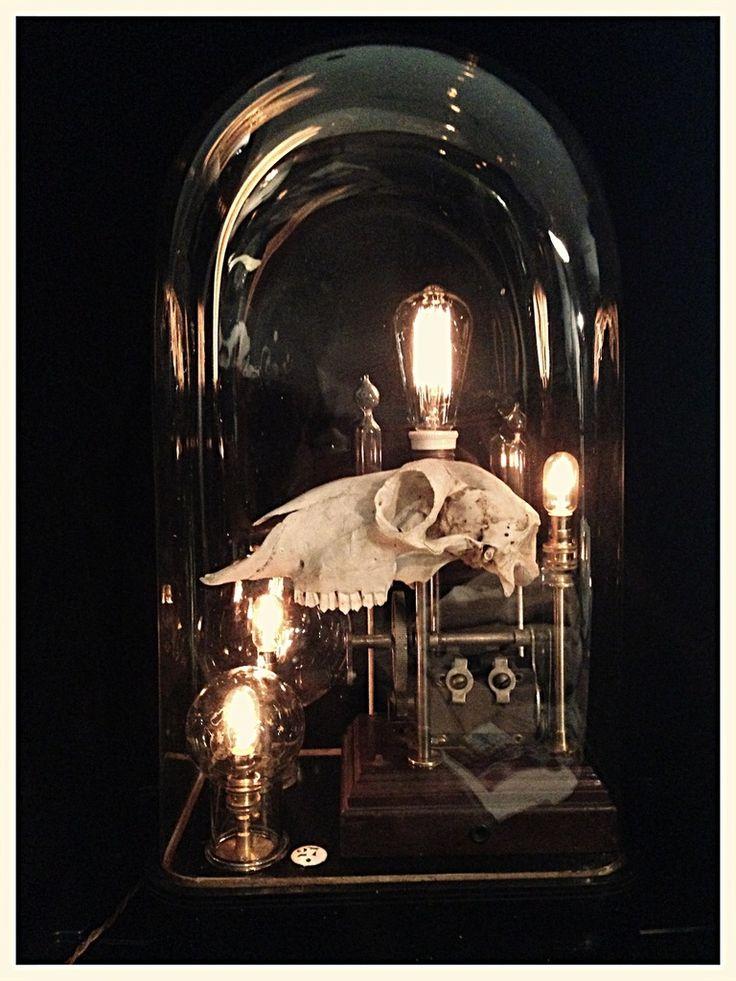 Lampe cabinet de curiosité n°27, création Hods Design. Curiosity cabinet lamp, cabinet of curiosities style. Copyright : www.hods-design.com. Antiquités industrielles, design, vintage, curiosités. Industrial, vintage, design french antiques and curiosities. www.hods-design-antiques.com
