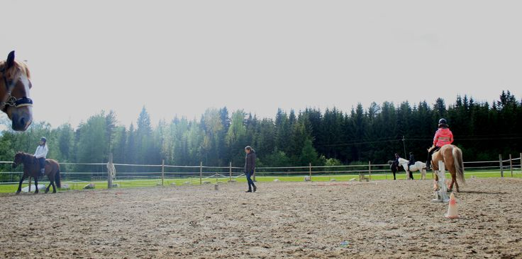 young summer camp 2015 Noora Ehnqvist teaches riding.
