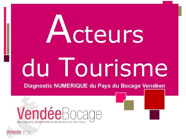 diagnostic num rique pays bocage dern version offioce de tourisme vendee bocage 2014. Black Bedroom Furniture Sets. Home Design Ideas