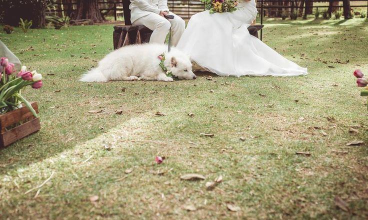 Nico Fernández by ©efeunodos, Fotografía de matrimonios en Colombia, fotos de bodas en Colombia / wedding photography efeunodos.com