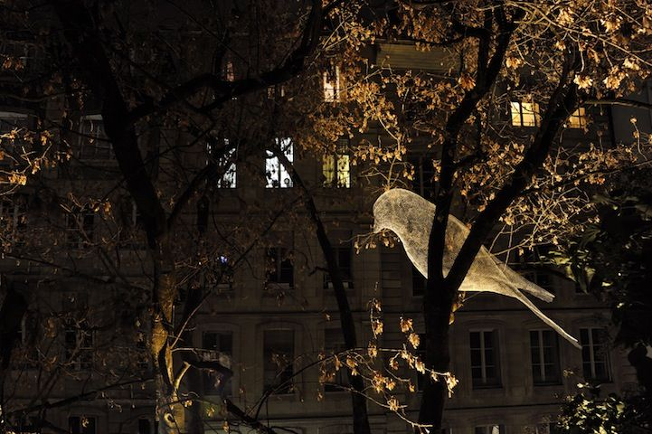 French artist Cédric Le Borgne constructed a series of wire mesh birds that could be seen perched on trees as part of an annual outdoor tree light festival (2012 Festival Arbres en Lumière) in Geneva, Switzerland just off Rue de la Fontaine.