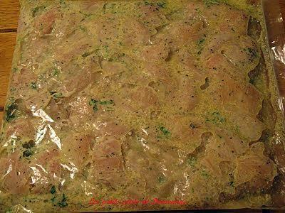 Recette de Marinade pour brochettes de poulet ( style Casa Grecque )