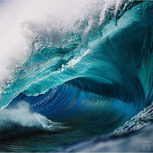 Extraordinary!!! Truly! Enjoy your week to come .. Photo @thurstonphoto #bodyboarding #team #store www.boardlounge.com