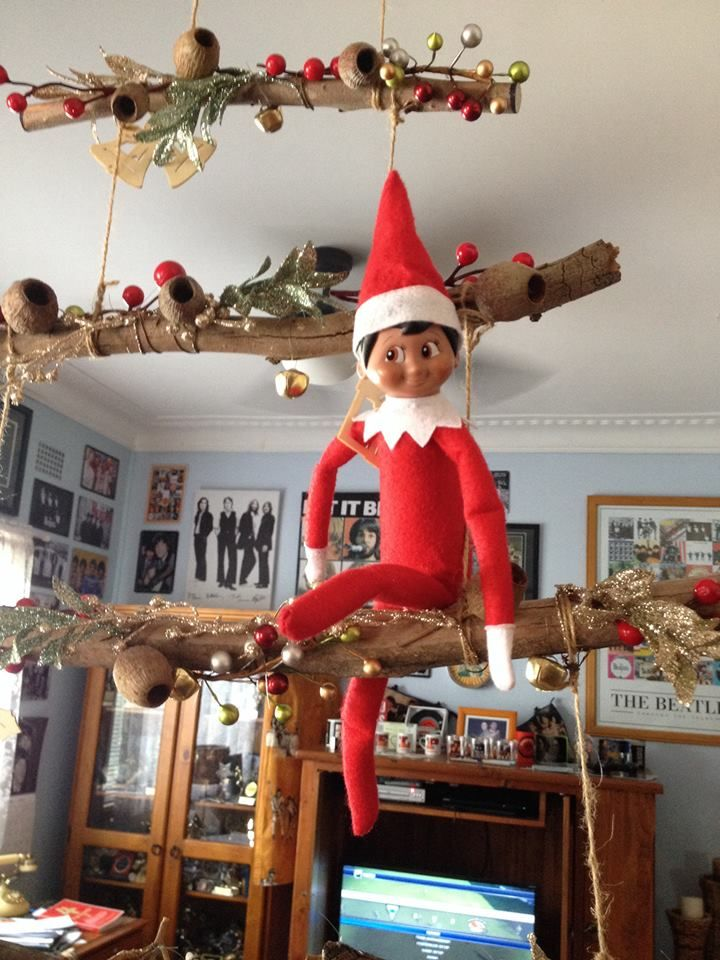 Elf on the shelf -hanging out on the tree
