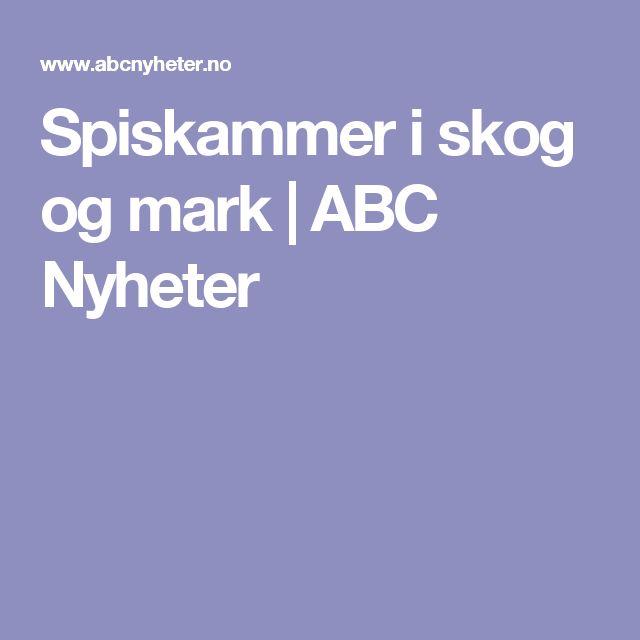 Spiskammer i skog og mark   ABC Nyheter