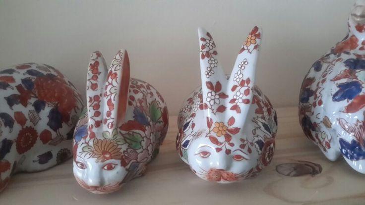 My new rabbit
