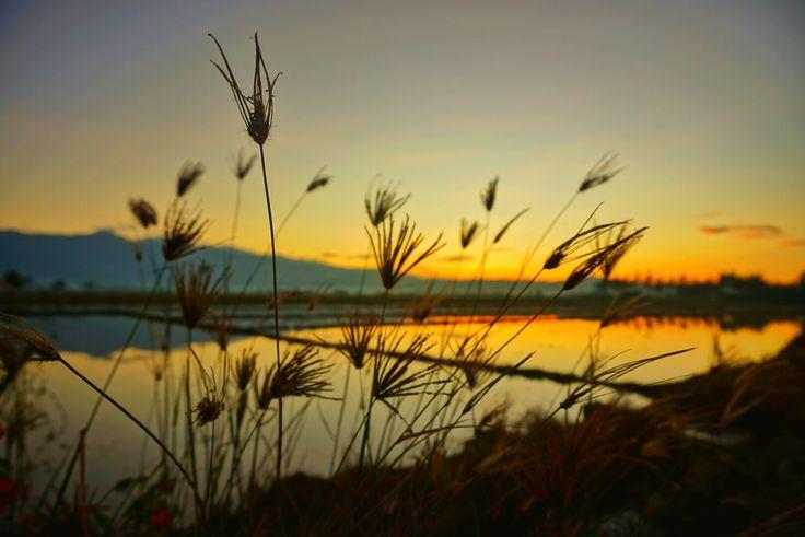Nature view. Mensung, parigi moutong, sulawesi tengah