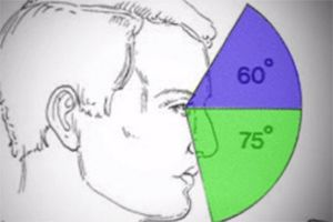 - Visual Fields, Field Loss, and Functional Vision Testing - repinned by @PediaStaff – Please Visit  ht.ly/63sNt for all our ped therapy, school & special ed pins