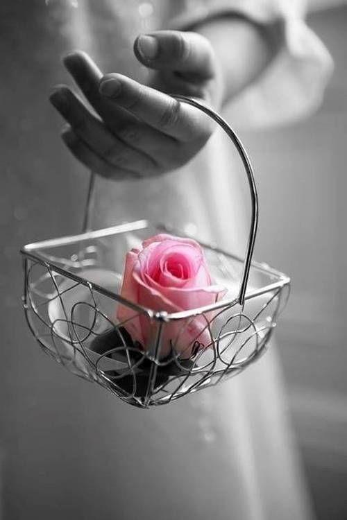 Boa Tarde! Que Deus cuide sempre de você! Agradeço o carinho de sua amizade sempre pertinho de mim. Tornando este mundo virtual um momento real!